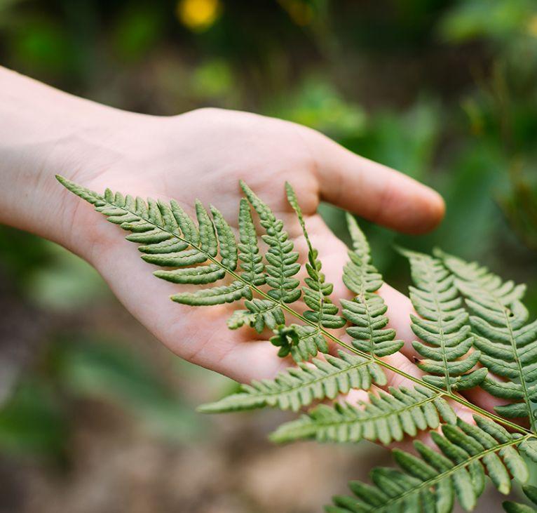 Ambiental y Agroindustria