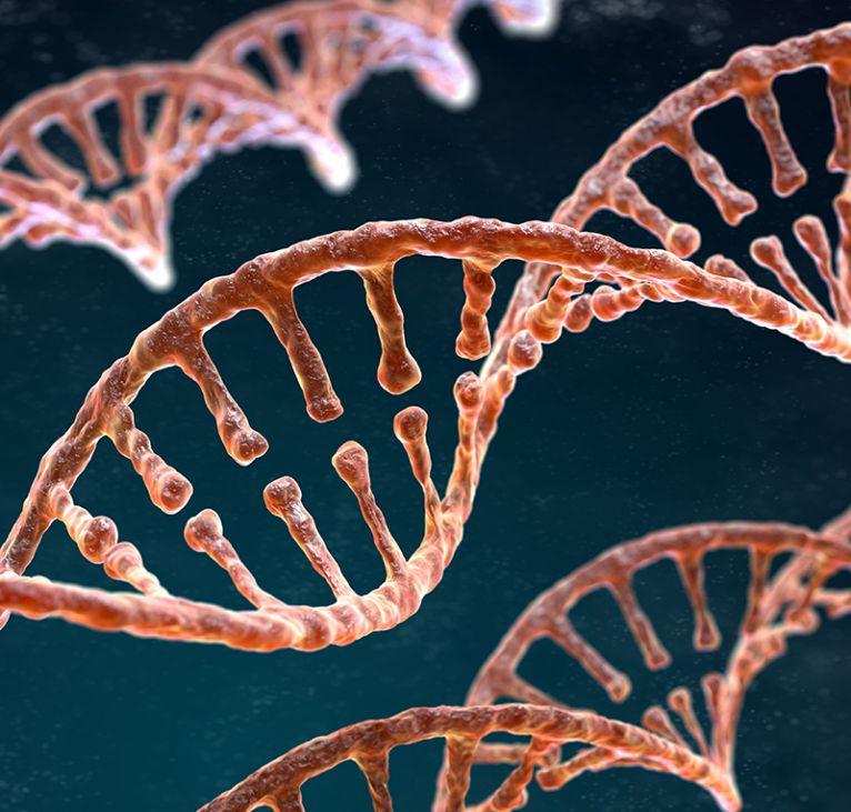 Biotecnología e Investigación